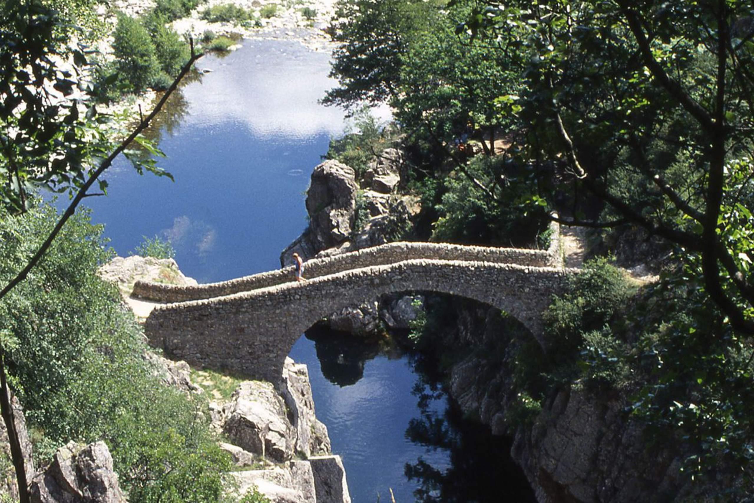 pont au coeur de la nature en ardeche